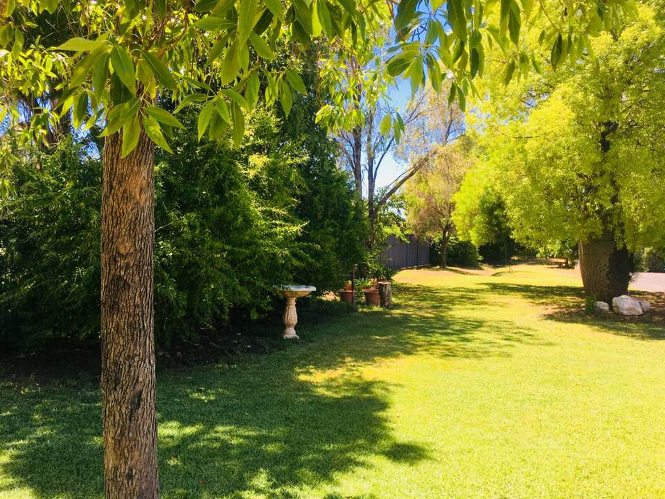 Balonne River Motor Inn provides clean and comfortable accommodation in St George at affordable prices.